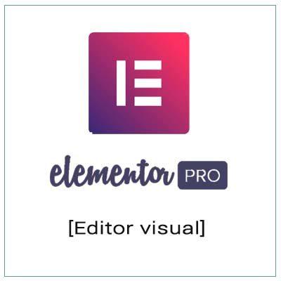 elementor pro editor visual wordpress